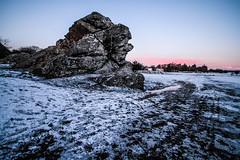 Winter sunrise & the rock (NikNak Allen) Tags: plymouth yelverton dartmoor devon england snow cold morning early low ground frozen freeze sun sky trees moors moorland rock bolder landscape snowscape longexposure 10stop nd pov view look horizon red