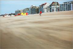 Sur la plage de Knokke, Belgium (claude lina) Tags: claudelina belgium belgique belgië knokke merdunord noordzee plage sable beach cabines immeubles buildings digue