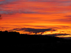 ....dunkle Wolken überm Wald..... (elisabeth.mcghee) Tags: abendrot abendhimmel abendsonne sunset sonnenuntergang himmel sky wolken clouds unterbibrach bäume trees wald forest oberpfalz upper palatinate