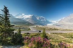 Columbia Icefield Ca. (ulidolz) Tags: canon eos5dmarkiv canada kanada rockymountains gletscher berge columbiaicefield mountain glacier alberta jasper banff