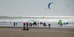 Kiteboarding and camels (gonfishin) Tags: kiteboarding camels beach essaouira