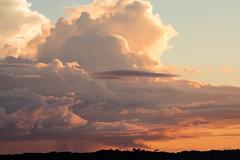 São Gabriel da Cachoeira-AM (Johnny Photofucker) Tags: sãogabrieldacachoeira am amazonas amazon amazônia brasil brasile brazil céu sky cielo nuvem nuvens nuvole nuvola clouds cloud floresta forest foresta 100400mm silhueta silhouett backlighting contraluz rainforest landscape paisagem natureza natura nature