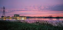 DSCF2579.jpg (amsfrank) Tags: morning winter ijburg amsterdam purple