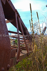 Growth Overtaking a Giant (keegsley) Tags: kinzua bridge viaduct mckean county pennsylvania rust metal abandoned destruction train railroad architecture