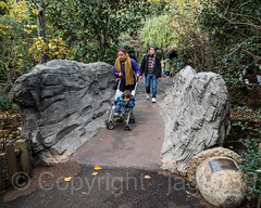 Children's Bridge over Duck Pond, Tisch Children's Zoo, Central Park, New York City (jag9889) Tags: 2018 20181112 bridge bridges bruecke brücke cp centralpark centralparkzoo crossing footbridge fussgängerbrücke infrastructure landmark manhattan ny nyc nycparks newyork newyorkcity outdoor park pedestrianbridge people pond pont ponte puente punt span stone structure usa unitedstates unitedstatesofamerica water zoo jag9889 tischchildrenszoo