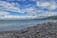 LL pepple beach Clovelly 8th Aug 2017 (Lisa missing Stella) Tags: clovelly