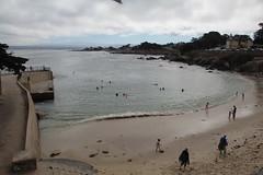 IMG_10925 (mudsharkalex) Tags: california pacificgrove pacificgroveca loverspointpark loverspointbeach beach