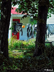 ... (Jean S..) Tags: summer outdoors house trees laundry clothesline pants clothes