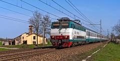 FS E444R 114 (maurizio messa) Tags: emiliaromagna ic intercity ic610 e444r e444 tartaruga mau bahn ferrovia treni trains railway railroad nikond90