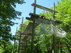 JUNGLE GYM (the high rope) (bitemeasshole69) Tags: kinarkoutdoorcentre minden ontario canada lakes water outdoors wilderness nature specialneedscamp autismontario activities freshair upnorth northernontario camping respite fun exhilirating hwy35 counsellors scenic picturesque calming serene peaceful landscape wildscape coniferous deciduous trees nativetrees foliage underbrush lush canadianwilderness spring2018 green bugs insects