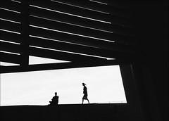 F_MG_2302-BW-1-Canon 6DII-Tamron 28-300mm-May Lee 廖藹淳 (May-margy) Tags: maymargy bw 黑白 人像 起風 逆光 剪影 露臺 遮陽板 幾何構圖 點人 街拍 線條造型與光影 天馬行空鏡頭的異想世界 心象意象與影像 台灣攝影師 台南市 台灣 中華民國 fmg2302bw1 portrait backlighting silhouette sunshield rooftopterrace motion 脈動 windy humaningeometry humanelement streetviewphotography taiwanphotographer linesformandlightandshadow naturalcoincidencethrumylens canon6dii tamron28300mm maylee廖藹淳 mylensandmyimagination