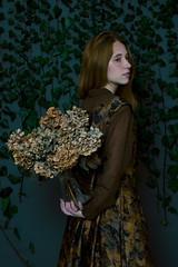 Hydrangea (© Rocío Ponce) Tags: rocioponcephoto rocioponcecom rocioponce rocioponcephotography studio vintage indrolita hydrangea victorian edwardian flowers