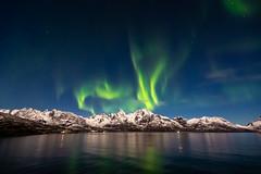 Norway [EXPLORED] (jpmiss) Tags: arctic night landscape sauvage nature norvege lofoten hurtigruten canon nuit northernlights norway auroresboréales paysage jpmiss auroraborealis travel mspolarlys 6d fullmoon nightscape pleinelune moonlit polar