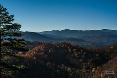 Full Moon Smokies (Ron Harbin Photography) Tags: great smoky mountains national park gsmnp cades cove landscape frame full fx outdoor f28 24mm d750 nikon copyright black blue green tree lightroom diffused light shade natural depth field pictures spring summer autumn fall winter 2018 flower grass escape fairytale wonderland forest photographer golden hour travel sun prime moon sky stars