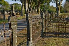 Extra Iron (BKHagar *Kim*) Tags: bkhagar fence fencing iron metal old vintage cemetery graveyard florence al alabama hff