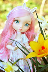 Flower Girl ☆ (Shimiro Doll Photography) Tags: bjd doll dollphotography bjdphotography portrait nikon balljointeddoll custombjd toy pullip dolls toys cute kawaii yosd pastelgirl pastelfashion pastel lillycat cerisedolls toyphotography poulpy lillycatpoulpy cerisedollspoulpy
