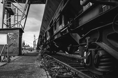 back on the track (Zesk MF) Tags: line graffiti clogne zesk zug train bahnlinie bw black white fuji x100f dom
