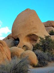 Skull rock, Joshua Tree National Park (moonjazz) Tags: rock geology nationalpark joshuatree skull landmark desert photo shapes trail hiking california southern odd bizzare sandstone travel