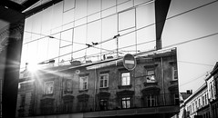1T7A7232 (line-o) Tags: lviv bw architecture sunset