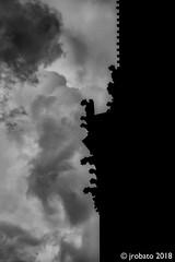 Gargoyle Silhouettes (orgazmo) Tags: gargoyles silhouettes paris france notredame blackwhite monochrome olympus omd em1mk2 mzuiko12100mmf4ispro micro43s m43s