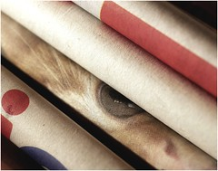 Beware the Cat's Eye ! (jesse1dog) Tags: olympuszuikoomautomacro50mm 50mm macro tabletop paper print newspaper cat eye red texture gm1 extensiontube