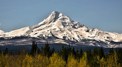 Mount Hood, Oregon (maytag97) Tags: maytag97 nikon d750 hood mount oregon white mountain view nature mt sky ski travel landscape scenic northwest blue beauty usa season outdoors tourism snow recreation trees majestic pacific cascade beautiful slopes spring outdoor clean explore forest mountainside tree range area covered capped summer high scenery america