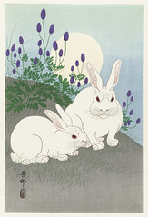 Rabbits at full moon (1920 - 1930) by Ohara Koson (1877-1945). Original from The Rijksmuseum. Digitally enhanced by rawpixel. (Free Public Domain Illustrations by rawpixel) Tags: pdproject21batch2x otherkeywords tagcc0 animal antique art asian drawing fullmoon illustration japan japanese koson museum name ohara oharakoson old paint rabbits rijksmuseum vintage