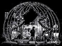 Merry Christmas and Happy new year (davcsl) Tags: blackwhite bw biancoenero blackandwhitephotosonly callejerastrassenfotografie davcsl europe france gard languedocroussillon monochrome monotones noiretblanc noiretblancblackwhite nb nimes nîmes occitanie people photographiederue photoderue southoffrance streetphotography street urbanstreet noël merrychristmas happynewyear sapin