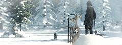 🐧 (nimedaviau) Tags: anapose shinyshabby sled walk animation breathing stand cane strasbourg