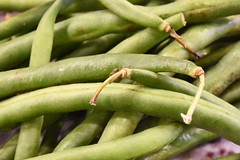 Green Beans 295/365 (stevenp2269) Tags: color green vegetables d7200 nikon macro greenbeans