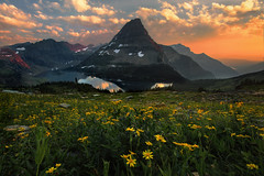 Hidden Lake Sunset (NickSouvall) Tags: warm light color alpenglow glowing red orange clouds cloudy sky dramatic storm yellow flowers field view overlook hidden lake glacier national park montana rocky mountains range peak reflection drama landscape nature
