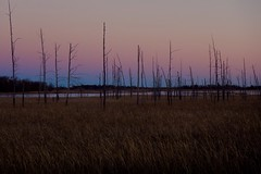 Sherburne National Wildlife Refuge (finlander13) Tags: minnesota sherburnenationalwildliferefuge onlyinmn sunset fall autumn autumncolors