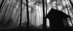 Monte Beiro (Noel F.) Tags: sony a7r a7rii fe 24105 monte beiro valga galiza galicia mist fog neboa
