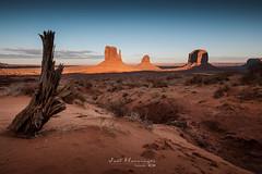 Monument Valley at sunset (jo.haeringer) Tags: sunset monumentvalley fuji nisi xt2 sand desert butte nisifilters sky blue trees navajo nationalpark usa
