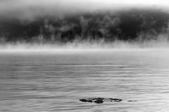 IMG_0053 (www.ilkkajukarainen.fi) Tags: blackandwhite mustavalkoinen monochrome suomenlinna helsinki visit travel travelling happy life suomi finland finlande merisavut eu europa scandinavia uunisaari