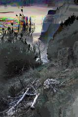 (pixelxcrash) Tags: nature digital photography hidden crimea shore coast rocks forest data materia life inner self sea trips concept