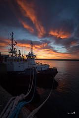 Remorqueurs.... (Patrice Le Roux) Tags: sunsetsunrise finistère bzh brest bretagne port bateau mer