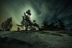 Moon and trees (clemensgilles) Tags: snow winter longexposure moon moonglow trees deutschland eifel germany