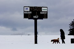 Scoreboard (stephencharlesjames) Tags: sports scoreboard snow dog silhouettes grey sky