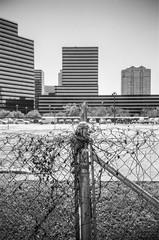 000940440006 (alexdotbarber) Tags: 15m 35mm houstongalleria ilforddelta100 lomolca analog blackandwhite expiration072017 fence zonefocus