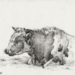 Lying cow (1828) by Jean Bernard (1775-1883). Original from The Rijksmuseum. Digitally enhanced by rawpixel. thumbnail