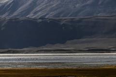 Tsokar#1 (jean matthieu) Tags: blue canon clood cloods color eos himalaya india indiantibet ladakh lake landscape light montain montains sky tsokar