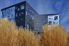 nature & architecture (heinzkren) Tags: contemporary architecture nature color sky wien vienna building gebäude prater uni university windows urban sony modern reflection