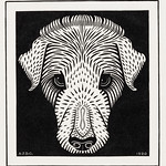 Dog's head (1920) by Julie de Graag (1877-1924). Original from The Rijksmuseum. Digitally enhanced by rawpixel. thumbnail
