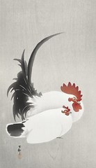 Rooster and hen (1900 - 1930) by Ohara Koson (1877-1945). Original from The Rijksmuseum. Digitally enhanced by rawpixel. (Free Public Domain Illustrations by rawpixel) Tags: pdproject21batch2x otherkeywords tagcc0 animal antique art asian drawing hen illustration japan japanese koson museum ohara oharakoson old paint rijksmuseum rooster vintage