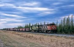 Freight to Flin Flon at the 54th parallel (rolfstumpf) Tags: canada manitoba hudsonbayrailway cn3530 hbry hbry3548 mlw m420w freighttrain trains railway railroad hbry3530 omnitrax