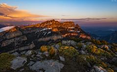 Sestrales desde la cima del Mondoto (sostingut) Tags: montaña atardecer pirineos añisclo tamron nikon d750 primavera cielo nubes cañón valle hierba rocas soledad