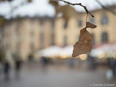 (danielegulberti) Tags: pisogne mercatini natale street