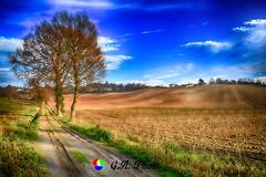 Terre del Monferrato (AL) (Gianni Armano) Tags: terre del monferrato al valle san bartolomeo alessandria piemonte italia foto gianni armano photo flickr