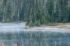 Reflective Lake (jeff's pixels) Tags: landscape nature outdoors hiking pnw washington nationalpark mountrainiernationalpark mountrainier reflectivelake autumn reflection bus bird train nikon d850 nikkor